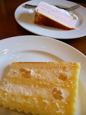 本日のハーフサイズのケーキ@名古屋かネット