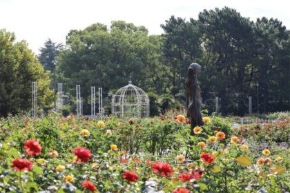 鶴舞公園バラ園